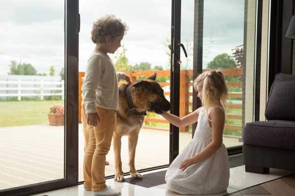 A boy and girl playing with a dog coming inside the house