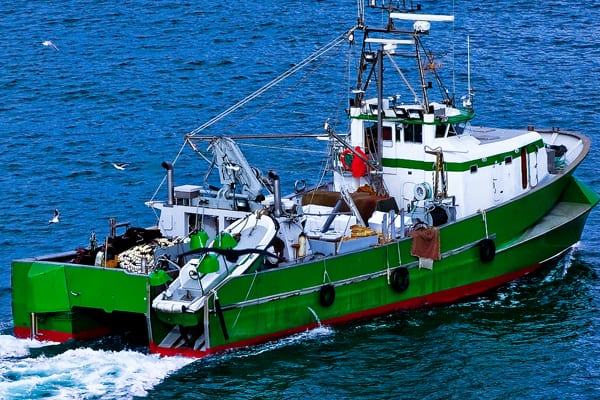 Marine and Navy Fishery Vessels